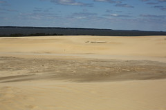Jockey's Ridge State Park (SeannPatrickPhotography) Tags: outerbanks sand nc northcarolina dunes beach island midatlantic obx