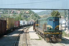 Trains de fret en gare de Đeneral Janković (Trains-En-Voyage) Tags: serbie yougoslavie kosovo unmikrailways