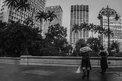 Centro de Sao Paulo. (BIANO SKATE STYLE.) Tags: spdagaroa spfotografia splove splovers spbrasil sp spcapital saopaulodagaroa saopaulo saopaulocity olharurbano olharesdesampa olharesdesp olhardesampa streetphotography streetfotography streetfotografia streetphotobrasil streetphotopb streetphotobnw streetphotobw pburbano pb photopb fotografiapb fotografiapretoebranco fotopretoebranco fotografiasp bnw bw