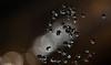 Waterbubbles (gabrieleskwar) Tags: outdoor wasser wassertropfen makro lichter reflexe
