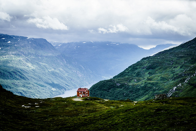 A Lonely House