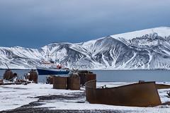 Deception Island (robertopastor) Tags: antarctica antarctique antarktika antartic antártida deceptionisland expedición fuji robertopastor southshetlandislands viaje xt2 xf1655mm