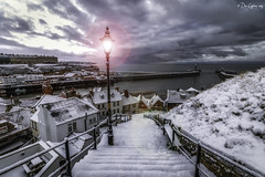 Back on the steps. (Dave Cappleman) Tags: whitby abbey church steps winter yorkshire northyorkshire cold february piers pier beach cliff