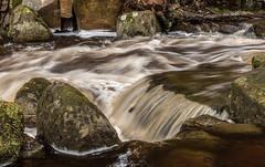 2018-04-03 PG-1390200.jpg (Hands in Focus) Tags: woodland derbyshire moss lumixfz1000 peakdistrict water padleygorge burbagebrook
