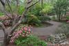 The path to perfection (Pejasar) Tags: path garvanwoodlandgardens hotsprings arkansas azaleas beauty outdoors landscape curve