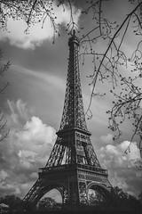Eiffel (marcelo.guerra.fotos) Tags: france fragrance europe paris eiffel toureiffel touristplace tourism tourist eiffeltower travel tower flickr blackandwhite blancoynegro bw noiretblanc noirblanc nocolor noir