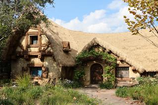 Seven Dwarfs Mine Train | Walt Disney World Resort