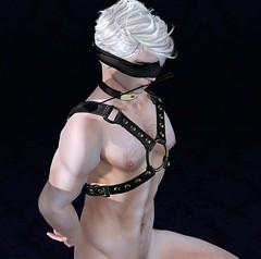 He Waits For Her (DaniGraphix Resident) Tags: hausofgraphelle secondlife sl avatar fantasy iheartsl kink bdsm ds submissive sub bound