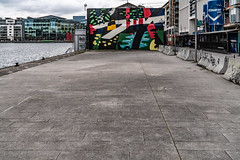 DUBLIN STREET ART BY DECOY [HANOVER QUAY APRIL 2018]-138247 (infomatique) Tags: decoy streetartist streetsofdublin hanoverquay streetsofireland urbanculture williammurphy infomatique fotonique april 2018 streetart sony a7riii dublin