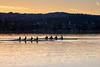 Rowers in the morning: two quads (2/2) (jaeschol) Tags: europa kantonzürich kontinent morgen morning ruderboot ruderer schiff schweiz sport suisse switzerland zeit zürich zürichsee