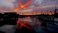 One Last Look (sswj) Tags: reflection sunset harbor pillarpointharbor johnsonspier halfmoonbay northerncalifornia leica dlux4 availablelight naturallight composition pacific scottjohnson