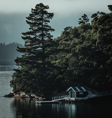 The Boathouse (Mike_Mulcahy) Tags: yellow nz new zealand newzealand fuji fujifim xt2 southisland marlborough bayofmanycoves holiday wife vacation ocean lake sea cabin woods mountains muted 50230mm 500px