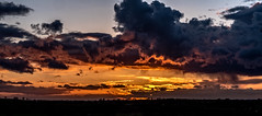 Evening cloud (Peter Leigh50) Tags: sunset clouds cloudscape skyscape sky skyline fujifilm fuji xt2 gumley rain weather april shower landscape leicestershire