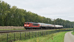 2017-09-28_6325 DBC 1611 Willemsdorp Dordrecht (Peter Boot) Tags: dbc 1611 willemsdorp dordrecht nederland gasketelwagen ketelwagen goederentrein goederenvervoer gasketeltrein ketelwagentrein 1600 alstom dbc1611 brabantroute trein cargo