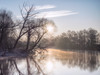 a new day (Florian Grundstein) Tags: river riverside naab naabtal oberpfalz heimat sonnenaufgang morning sunrise trees silhouette bayern nebel mist misty mood landscape nature natural