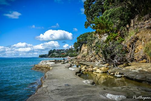 The Mairangi Bay to Murrays Bay walkway.