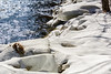 River Ice 5314 (rayclark1) Tags: water weather river snow londonderry vt unitedstates