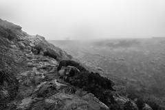 NB-7.jpg (neil.bulman) Tags: countryside longshawestate peakdistrict nature nationalpark derbyshire longshaw rocky rocks sheffield england unitedkingdom gb