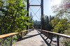 Elk-Kings-Trail-Ultra-3 (hotcommodity) Tags: urban landscape elkkings ultramarathon trailrunning trail forest tillamook stateforest