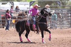 Queen Creek Junior Rodeo (twm1340) Tags: april 2018 cottonwood az verdevalley fair fairgrounds arena horse event rider cowgirl calf roping