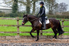 Cindy and Sophie Lesson-29.jpg (Steve Walmsley) Tags: lily jacinta horses sophie twoie lesson cindy