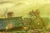 _J5K5512.0213.Dế Su Phình.Mù Cang Chải.Yên Bái (hoanglongphoto) Tags: asia asian vietnam northvietnam northwestvietnam landscape scenery vietnamlandscape vietnamscenery vietnamscene mucangchailandscape village house homes trees morning sunlight sunny sunnymorning mist hillside canon canoneos1dsmarkiii tâybắc yênbái mùcangchải dếsuphình bảnlàng nhữngngôinhà cây sườnđồi sươngmù buổisáng nắng nắngsớm canonef35mmf14lusm morningdew sươngsớm peace thanhbình