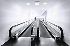 The Art of Prediction (Novowyr) Tags: escalator moving staircase stairway connecting tunnel underground subterranean berlin politics city people novowyr approaching distant architecture interior lines depth prediction prognosis vorhersage future zukunft bundestag
