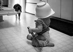 The Whisk Knight (Yewbert The Omnipotent) Tags: toronto canada funny candid baby toddler cat battle bw blackwhite tamron 35mm nikon d750 pets animals lightroom