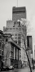 Downtown Montreal. (jorgegomez23) Tags: downtown montreal bw bn buildings sam atwork pictureoftheday picture picoftheweek canada calles streetphotography