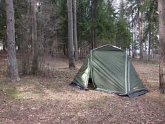 IMG_6318 (Бесплатный фотобанк) Tags: отдых наприроде влесу туризм туристы лес подмосковье московскаяоблас палатка палатки московскаяобласть россия москва