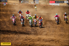 Motocross_1F_MM_AOR0247
