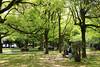 Hiroshima Peace Memorial Park (Sharaz Jek) Tags: hiroshima japan japanesehistory travelphotography travel canoneos550d history abomb atomicbomb