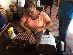Rolling Cigars (Midnight Believer) Tags: granadanicaragua cigars cigarfactory latina hispanic tobacco smokes latinamerica centralamerica candid indoors