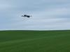 In full flight (RIch-ART In PIXELS) Tags: heron bird field grassland grass sky clouds fauna groothaasdal valkenburgaandegeul landscape zuidlimburg fujifilmxt20 xt20 egret