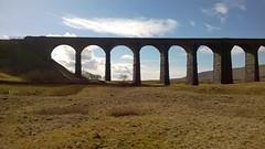 Lone trees (streetr's_flickr) Tags: ribbleheadviaduct settle carlisle railwaynorth yorkshirenational parkmoorlandblea moorvictorian engineering187075 masonry brickwork arches
