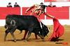 108 Aignan - Matinal - 01-04-2018 Philippe Gil Mir (Philippe Gil Mir) Tags: aignan philippe gil mir camino de santiago yon lamothe dorian canton