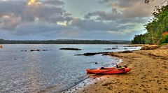 Kayaking again II ('phone camera) (elphweb) Tags: water ocean bay sea hdr nsw australia creek thecreek kayak kayaking sand sandy beach