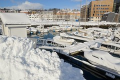 DSC_3167 (stephenholden46) Tags: tromso norway snow winter harbour arcticcircle