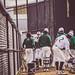 baseball_, April 11, 2018 - 308