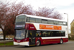 Round the houses.... (SRB Photography Edinburgh) Tags: lothian buses bus new edinburgh transport volvo 8 road trees