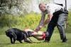Meine! (zola.kovacsh) Tags: outdoor animal pet dog ipo schutzhund dobermann doberman pinscher