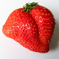 Kissing Strawberry (Andy Sut) Tags: strawberry fruit kiss lips romance quirky misshapen macro food