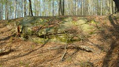 Damianek (nesihonsu) Tags: damianek hill wzgórzastrzegomskie wzgórzagoczałkowickie foresudeticblock sudeticforeland przedgórzesudeckie poland polska lowersilesia dolnyśląsk dolnośląskie rock outcrop gelogy geologia geotourism