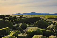 rocky plateau (Eyesplash - Summer was a blast, for 6 million view) Tags: green rock rocks outcropping plateau costal westcoast canada britishcolumbia sunset mountains pacificocean