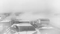 """""""Au milieu de l'hiver, j'ai découvert en moi un invincible été."""" ―Albert Camus ☁️ (anokarina) Tags: 💦 ☔️ ☁️ appleiphonese louisville kentucky ky centralbusinessdistrict monochome grey grayscale bw blackwhite fog haze hazy clouds cloudy overcast rooftops roofs city urban"""