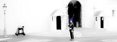 USUT - Au Quotidien (SabineLacombe) Tags: usut bleu monaco palais garde casque auquotidien