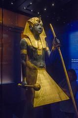DSC_1805 (Pachacoti) Tags: pharoah egyptian ancientegyptian kingtut tutankhamun antiquities