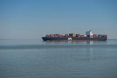 APL Miami_DVL4743 (larry_antwerp) Tags: container schip ship vessel 船 船舶 אונייה जलयान 선박 کشتی سفينة schelde 斯海尔德河 スヘルデ川 스헬더 강 رود شلده سخيلده perkpolder zeeland nederland netherlands 9597549 apl aplmiami
