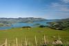 Once was Covered in Forest (Jocey K) Tags: newzealand nikond750 southisland akaora bankspeninsular landscape akaoraharbour hills sea fence rocks sheep sky