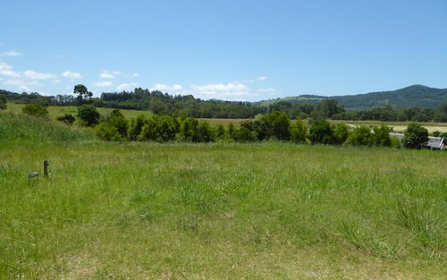 Lot 117 Tallowood Ridge (off Tuckeroo Avenue), Mullumbimby NSW